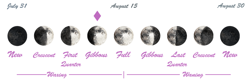 Astrology of Today - Sunday, August 11, 2019 - Astrology Cafe