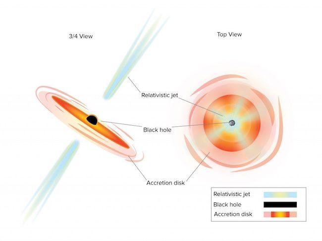 Mekanisme semburan material di lubang hitam. Kredit: Sophia Dagnello, NRAO/AUI/NSF
