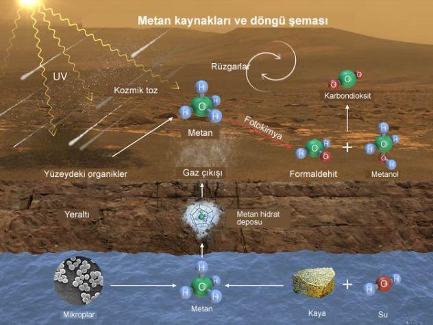 Marsta organik molekul