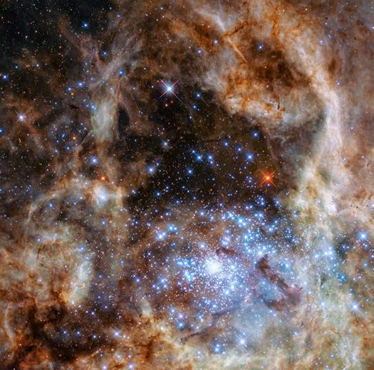 Macellan Bulutu'ndaki Tarantula Bulutsusu dev mavi yıldızlarla dolu R136 kümesini barındırmaktadır (NASA, ESA, P Crowther (University of Sheffield)).