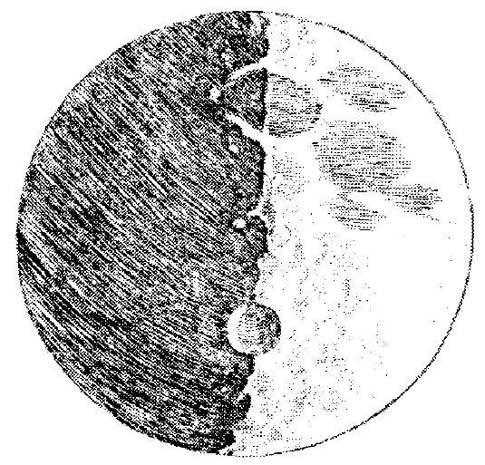 Galileo Nun Teleskopu Astronomi Diyari