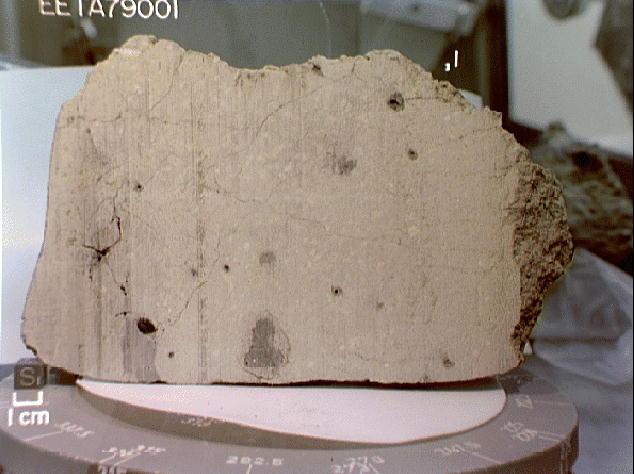 SNC meteorite (EETA 79001)