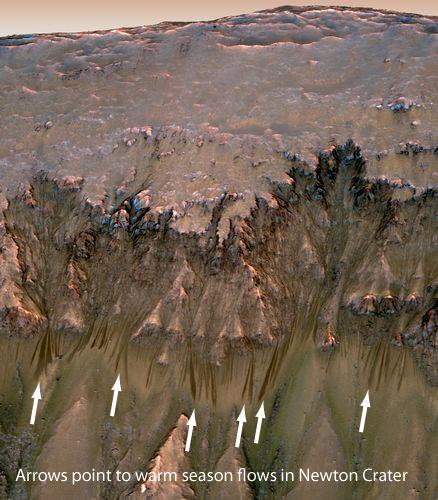 warm season flows in Newton Crater