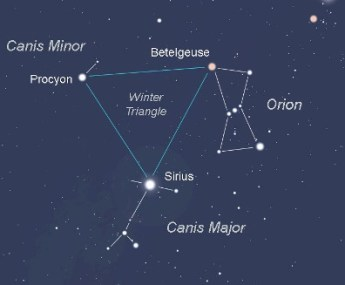 Star Constellations: Canis Minor, the Smaller Dog
