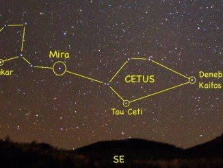 Star Constellation Facts: Cetus