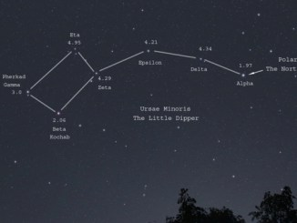 Ursa Minor Star Magnitudes