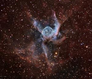 Duck Nebula
