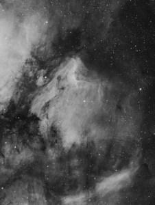 Steve Milne - The Pelican Nebula in Hydrogen Alpha