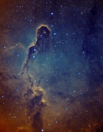The Elephant's Trunk nebula in IC1396 by Yves van den Broek