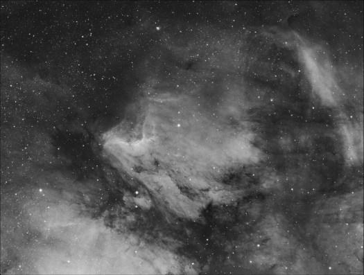 The Pelican Nebula by Steve Milne