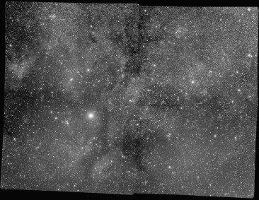 Green channel of Steve Milne's multi-channel mosaic of the Sadr region in the constellation Cygnus. NOT Corrected with LNC & MBB.