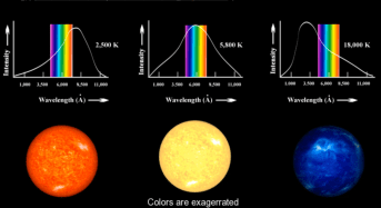 BlackBody physics - main sequence stars are fusing hydrogen to helium in their cores and are in hydrostatic equilibrium. As such, main sequence stars shine like so-called Black Bodies. Their color is dependent on their surface temperature.