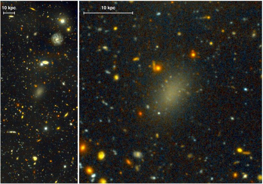A galáxia maciça Dragonfly 44 é demasiado ténue para a massa que tem, por isso deverá consistir maioritariamente de matéria negra. Créditos: Pieter van Dokkum, Roberto Abraham, Gemini Observatory/AURA.