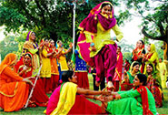 Baisakhi celebrations in 2016 will be amazing.