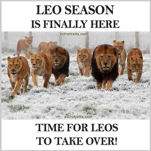 Leo Season is Finally Here Time For Leos To Take Over