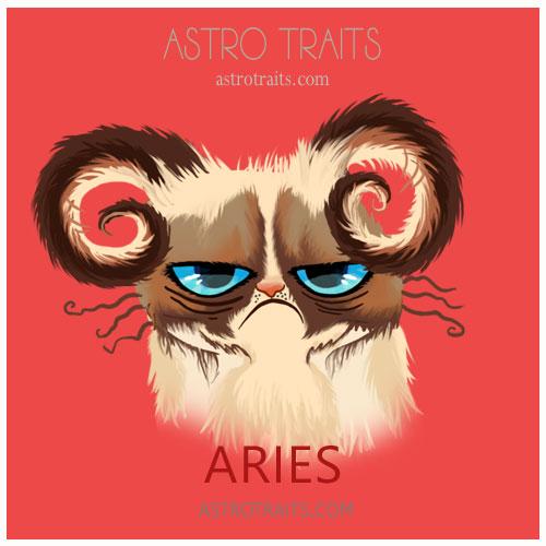 Aries Grumpy Cat
