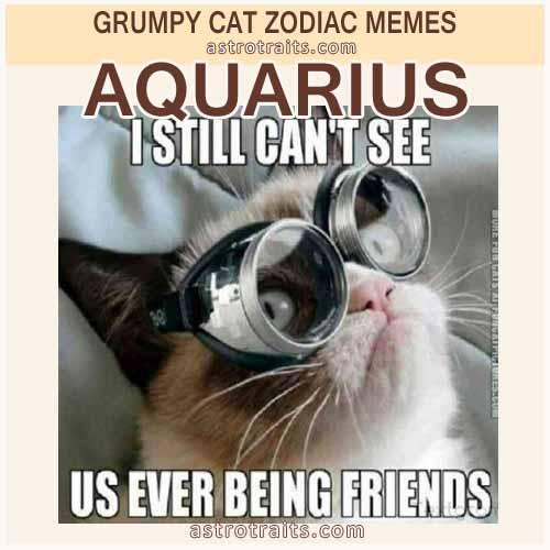 Aquarius Zodiac Sign Meme - Grumpy Cat
