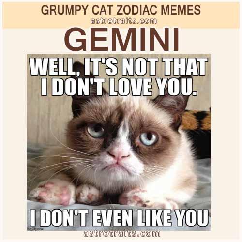 Gemini Zodiac Meme - Grumpy Cat