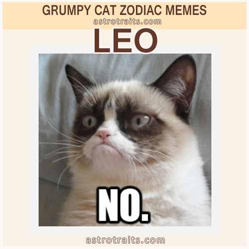 Leo Zodiac Sign Meme - Grumpy Cat