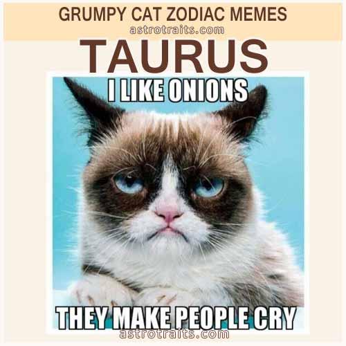 Taurus Meme - Grumpy Cat