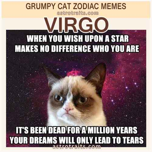 Virgo Meme 2 - Grumpy Cat