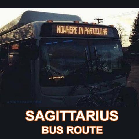 hilarious sagittarius memes