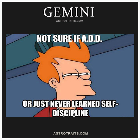 gemini add meme fry