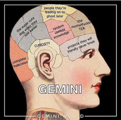 gemini brain meme