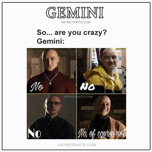 gemini crazy meme