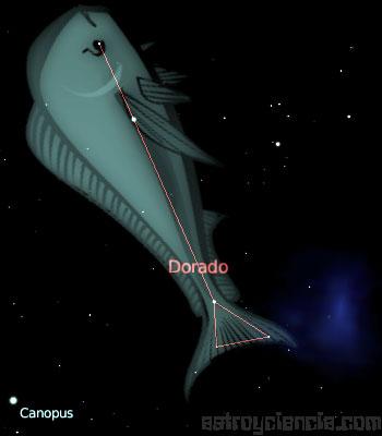 Figura de la constelación de la Dorada