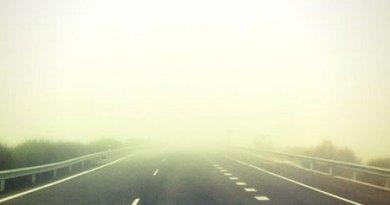 Rarezas de la niebla