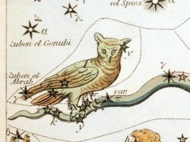 La constelación del buho