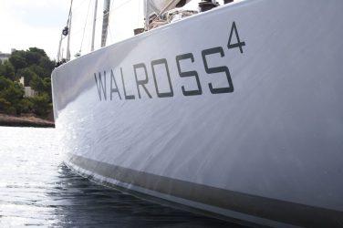 Walross 4