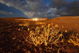 Dry desert plants (Cistanthe salsoloides) in front of the Paranal Residencia