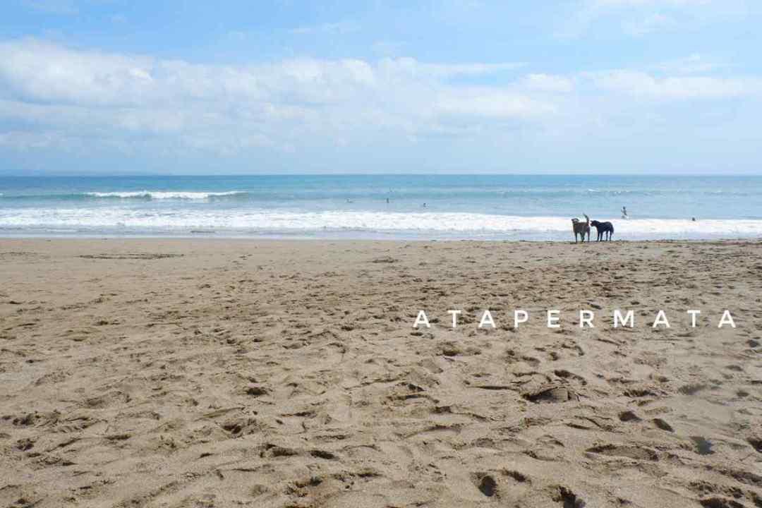 Pantai Canggu (1)