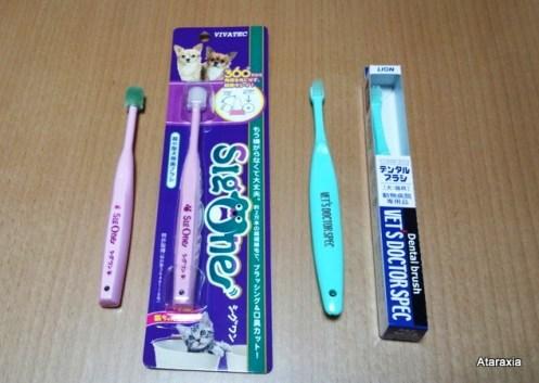 dentalbrush