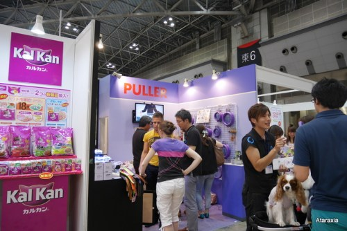 interpets2014_ataraxia (16)