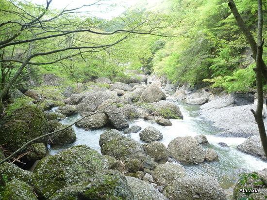 袋田の滝渓流