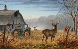 Deer Hunting and Gun Control