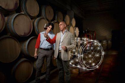 Marco Carpineti cellar