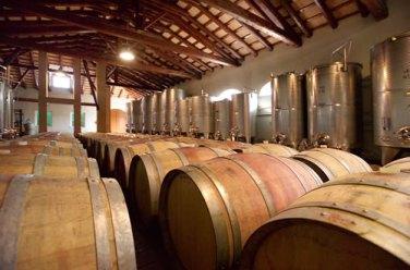 san biagio cellar