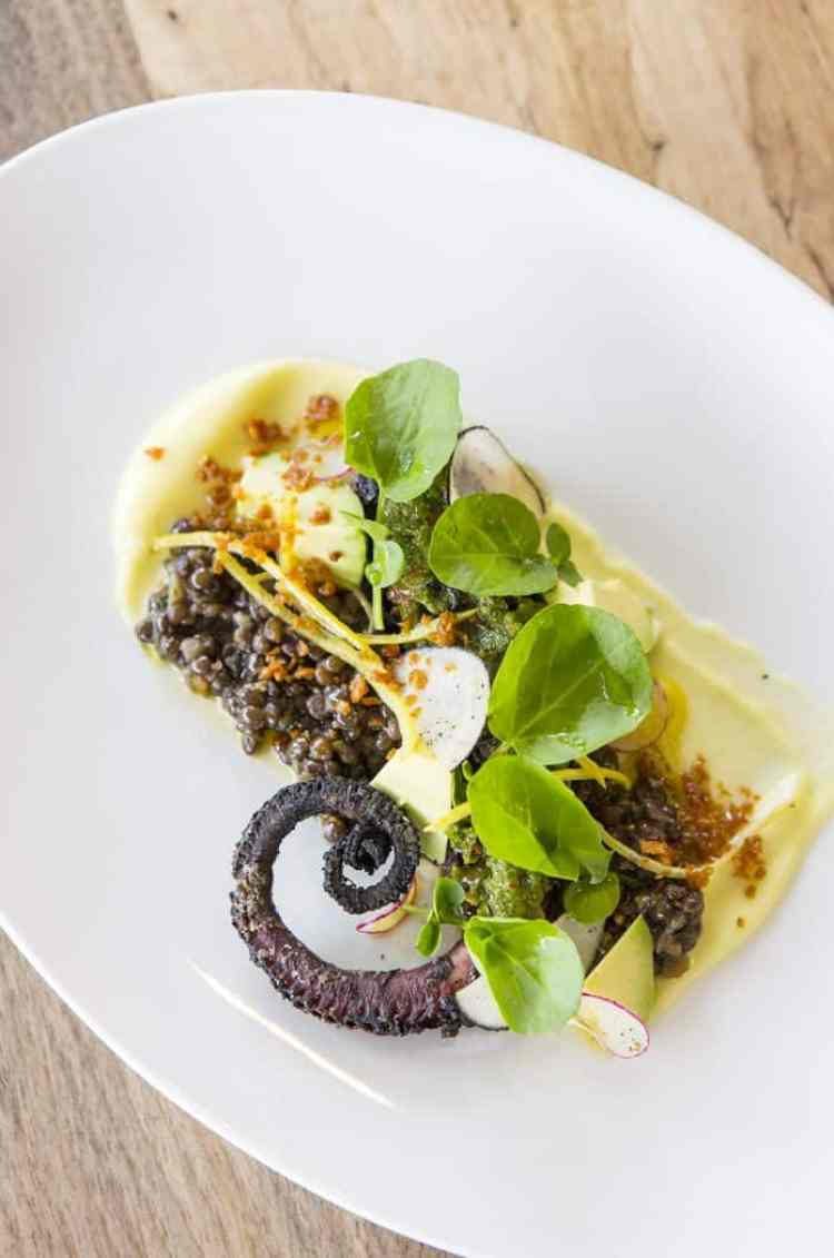 CHARRED OCTOPUS at Launderette