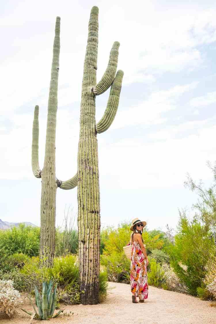 Girls' Weekend Getaway To Phoenix