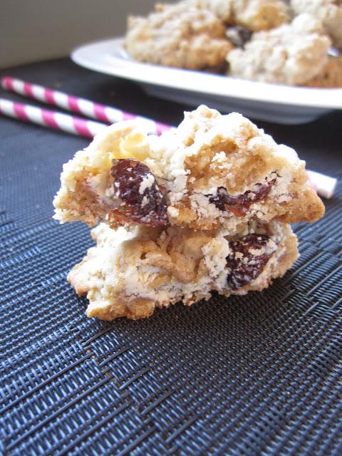 Oatmeal Yogurt Raisin Cookies