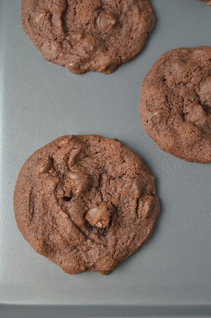 Chocolate Pudding Chocolate Chip Cookies