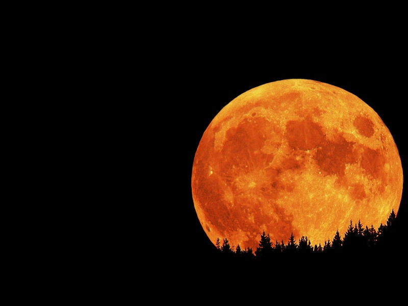 Total Eclipse of the Heart Red Moon
