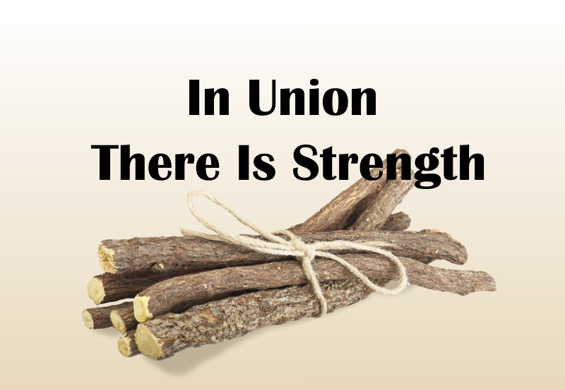 in union there is strength In union there is strength --aesop the state board of education held their monthly meeting in trenton on sept 12, 2018.