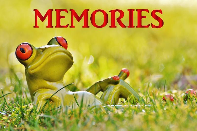 Fortune Cookie Friday: Make Good Memories