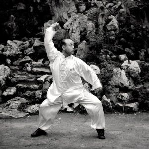 Master Wang Anlin Wenshengquan performing Kung Fu