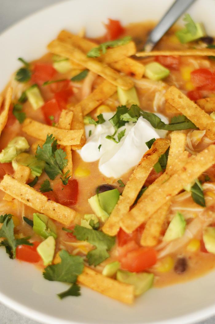 Slow Cooker Chicken Fajita Soup by A Teaspoon of Home